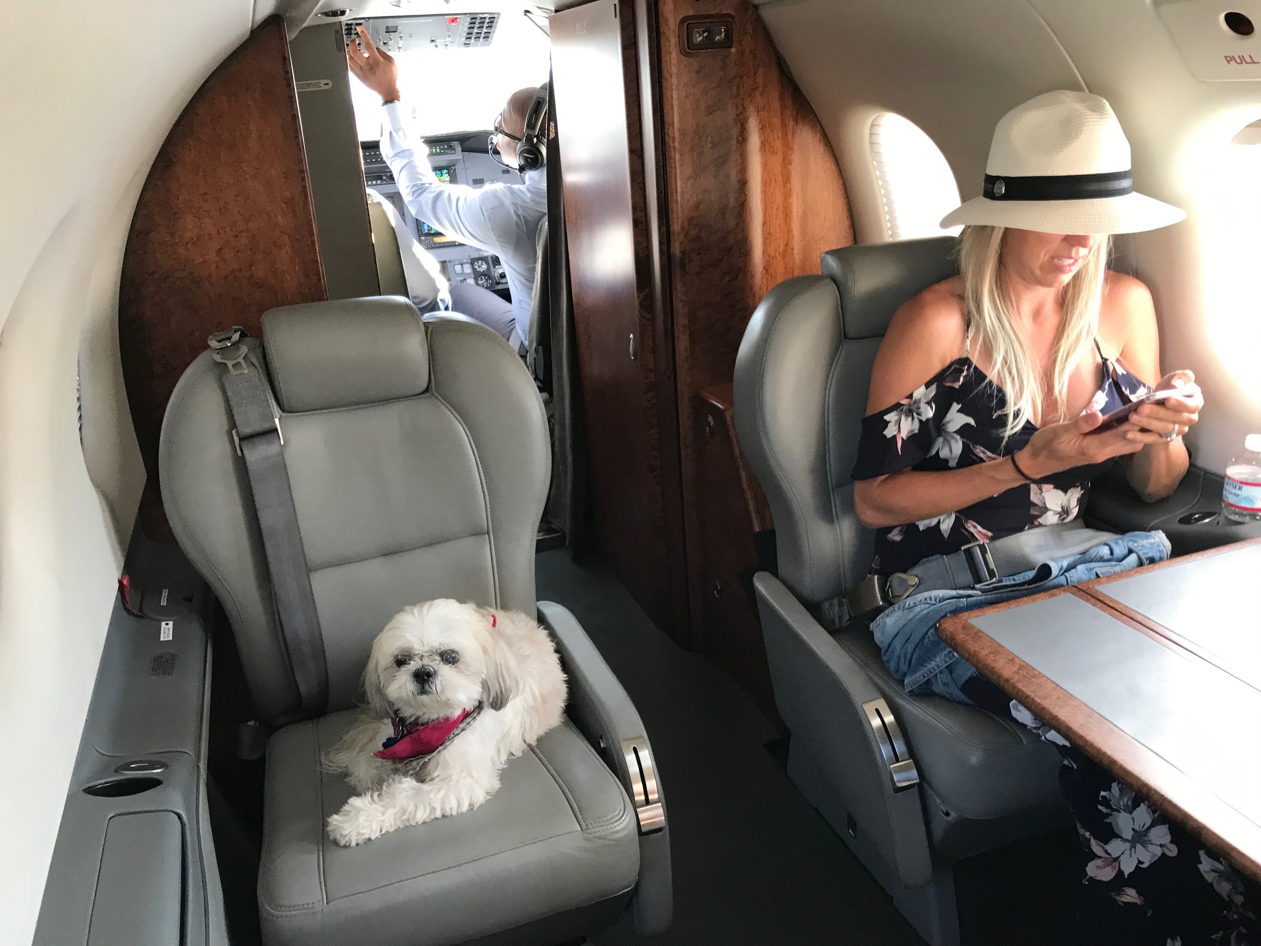 Ruby aboard Surf Air private jet.