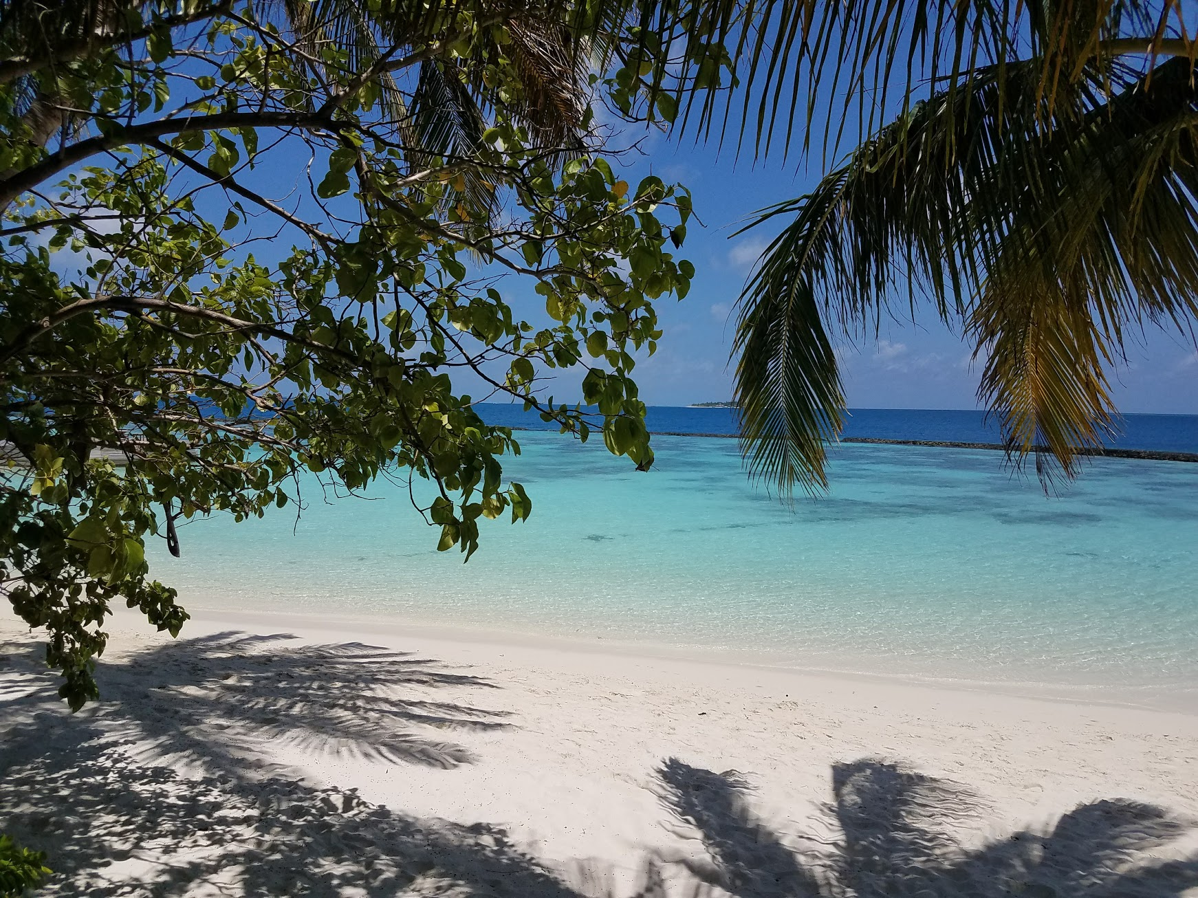Secludes beaches at Baros Maldives.