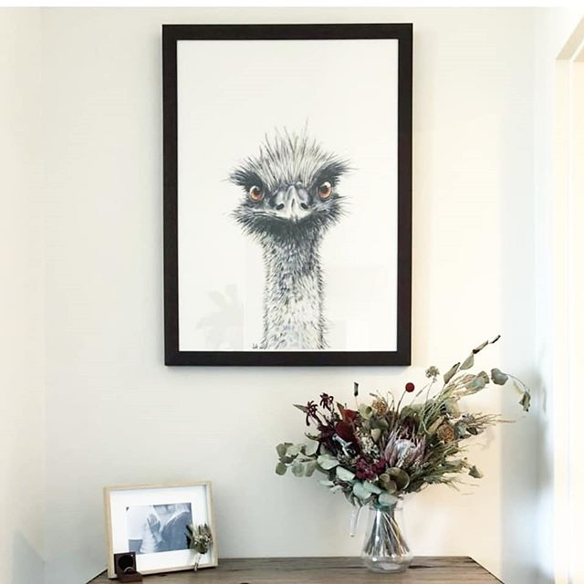 Love seeing these animals in their new homes. Ellington here was a wedding gift. #prints #decor #painting #emus #artwork #art