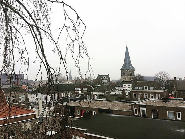 Uitzicht vanuit de boom op de #oudemarkt #enschede 😎 #boomverzorging #baumpflege #arborist