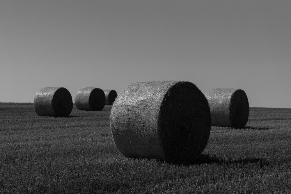 HayBales-1.jpg