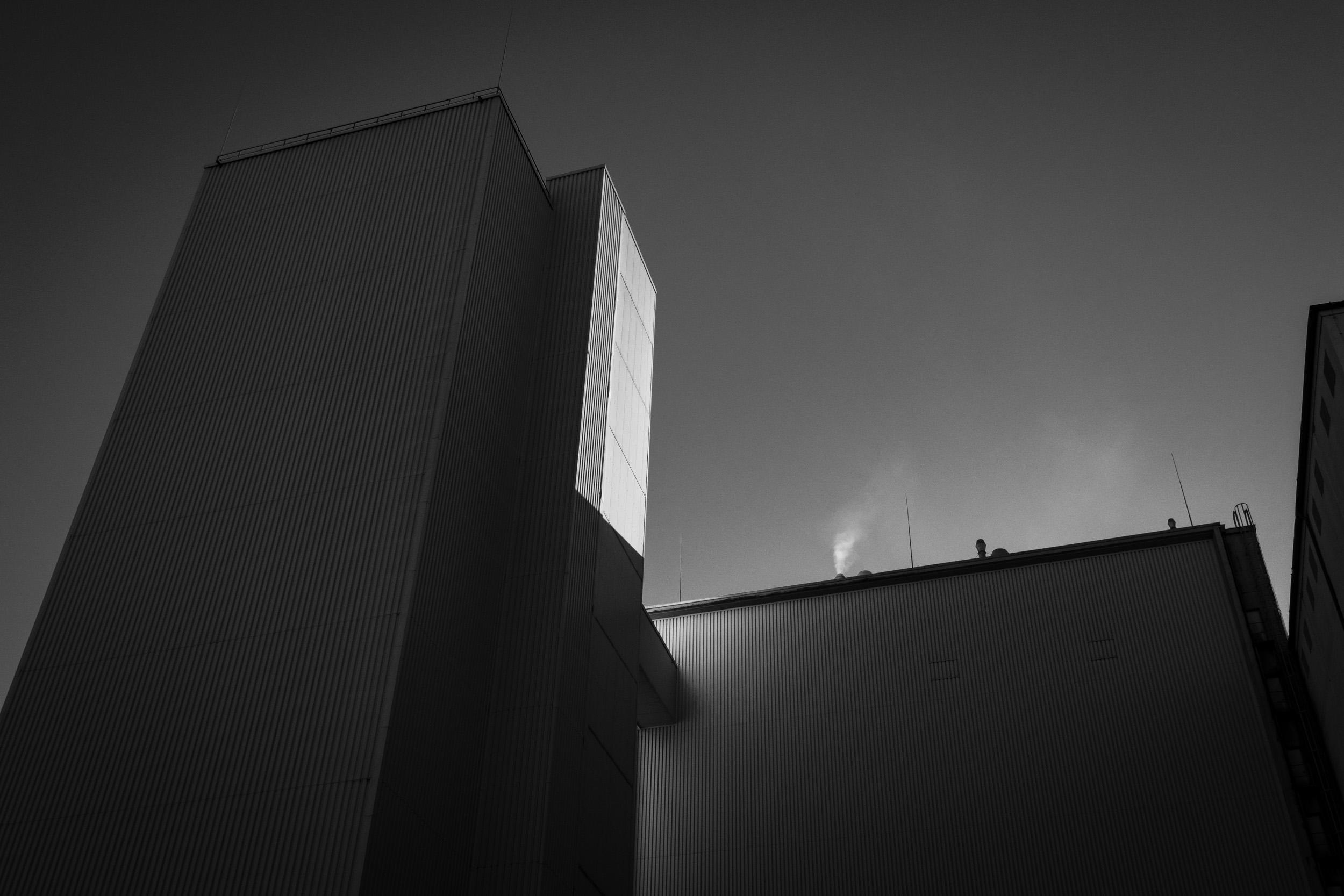 Cologne_3.jpg