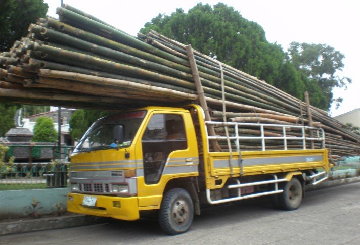 Trucks-are-used-as-a-major-transport-system-for-hauling-bamboo-poles-from-the-loading.jpg