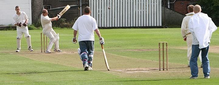 Cricket-2[1].jpg