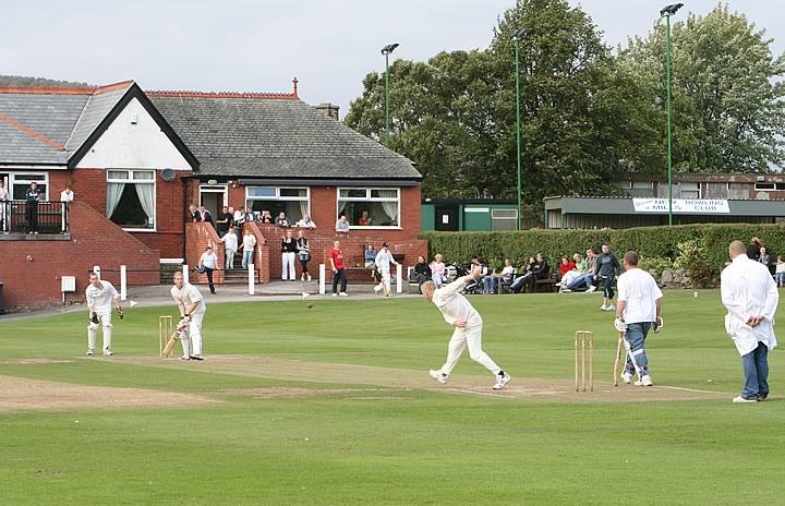 Cricket-1[1].jpg