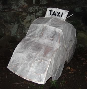 TaxiFlash(20k).jpg