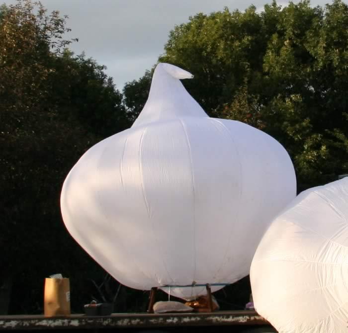 InflateGarlics-5.jpg