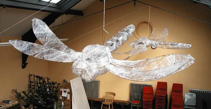 FestivalWorkshops-Dragonflies(30k).jpg