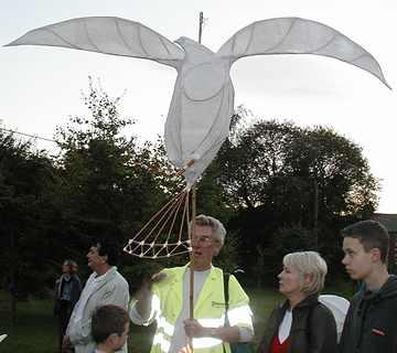 Lantern-Hawk-P20(15k).jpg