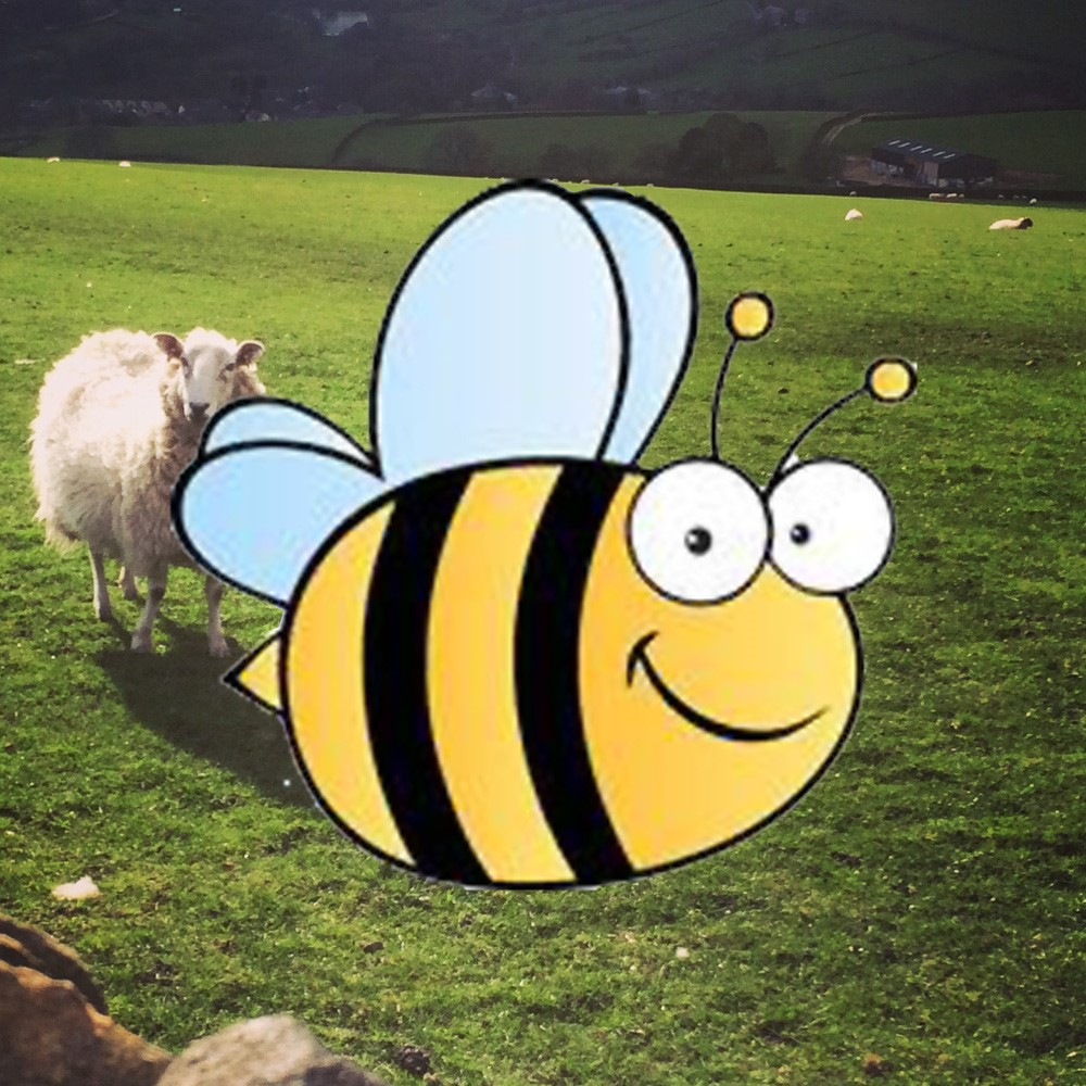 18 Beehive Comedy Night.jpg