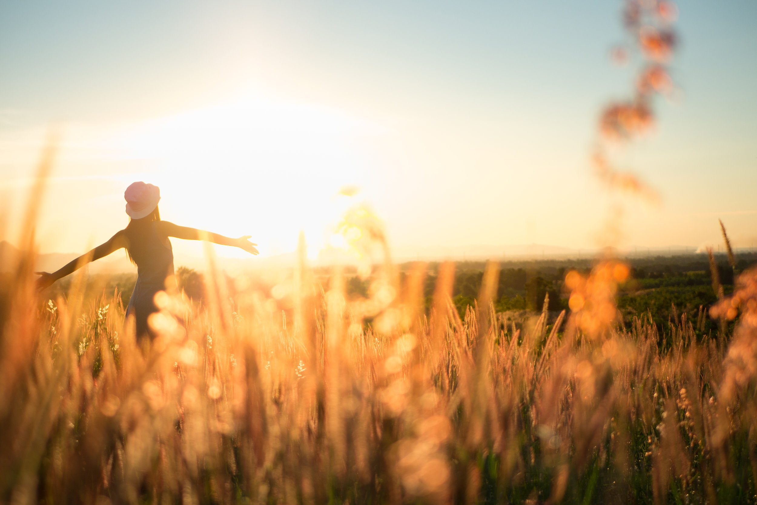 Auringonpaiste pellolla (S).jpg