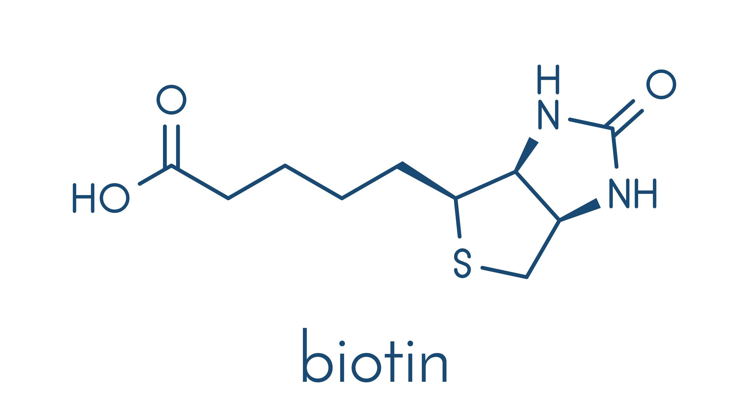 Biotin_5.jpg