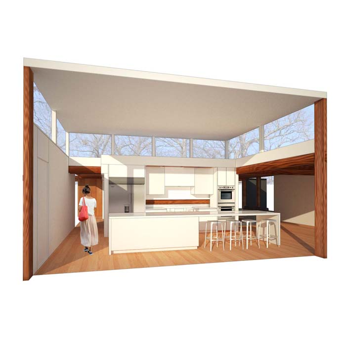 view of proposed kitchen