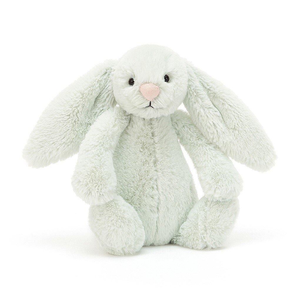 Bashful Bunny in Seaspray Breakwater.jpg