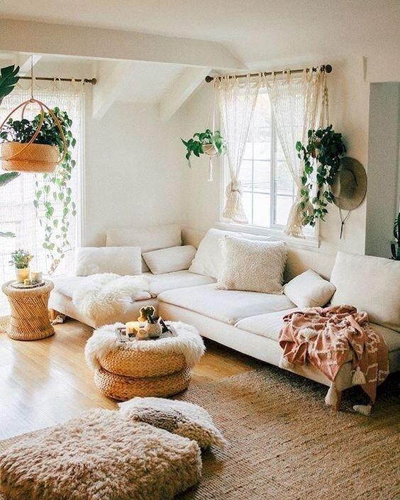 plants interiors 2.jpg