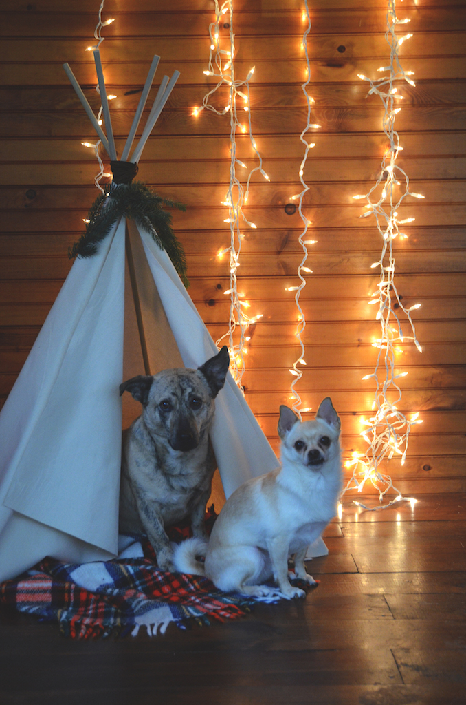 Dog tipi DIY