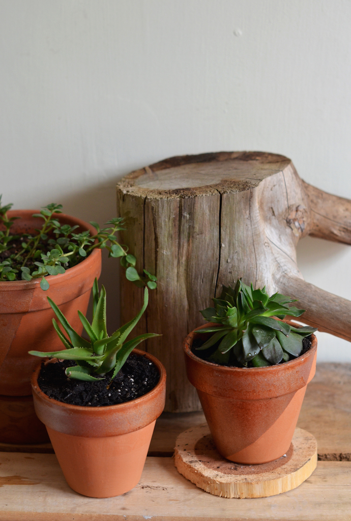 Simple Copper Plant Pots DIY