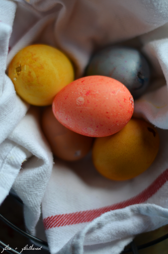 Fine and Feathered Eggs