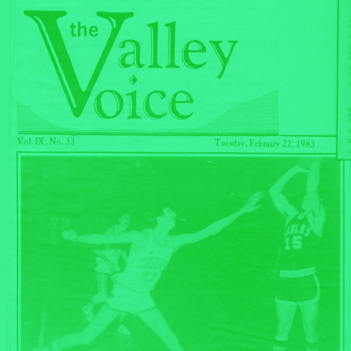 The Valley Voice -