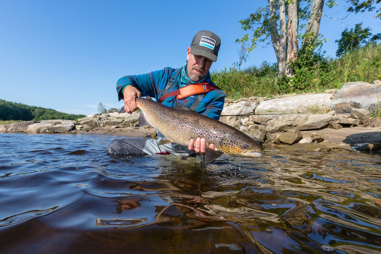 fly fishing on the miramichi 6.jpeg
