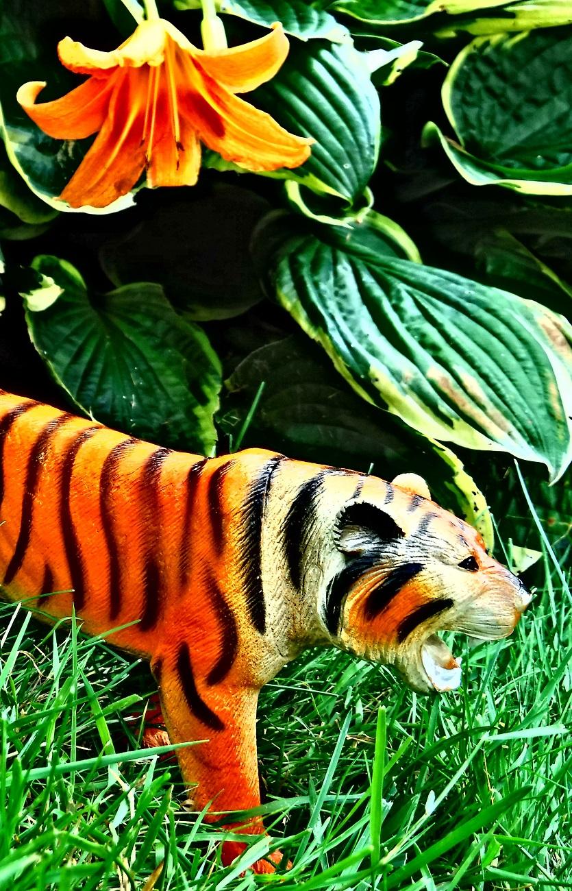 Lily, plastic tiger