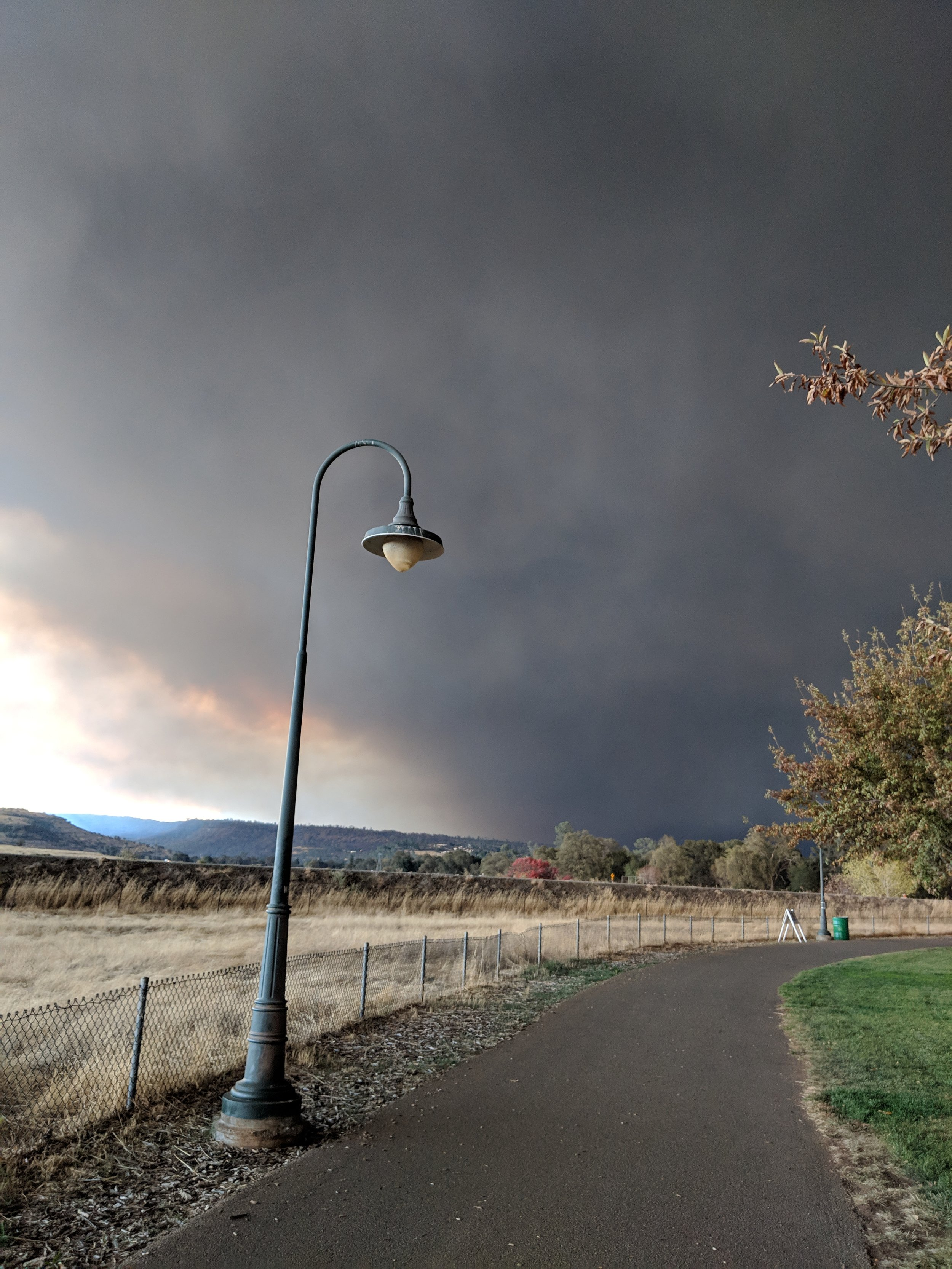 Alive in the Fire_Camp Fire Butte County (22).jpg
