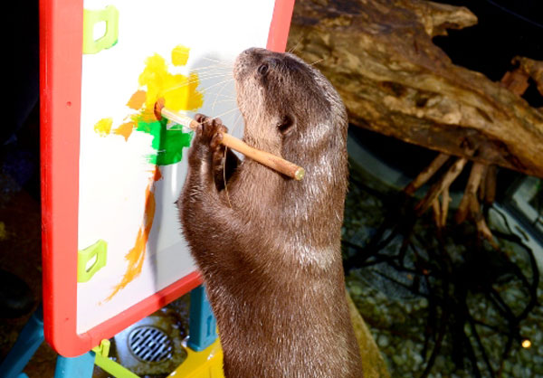 Otter Artistes Concentrate on Their Paintings 2