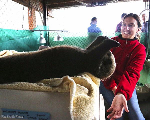 Sea Otter Rialto Has a Biiig Stretch