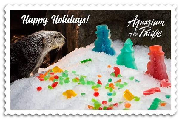 Have Otterly Happy Holidays! 3