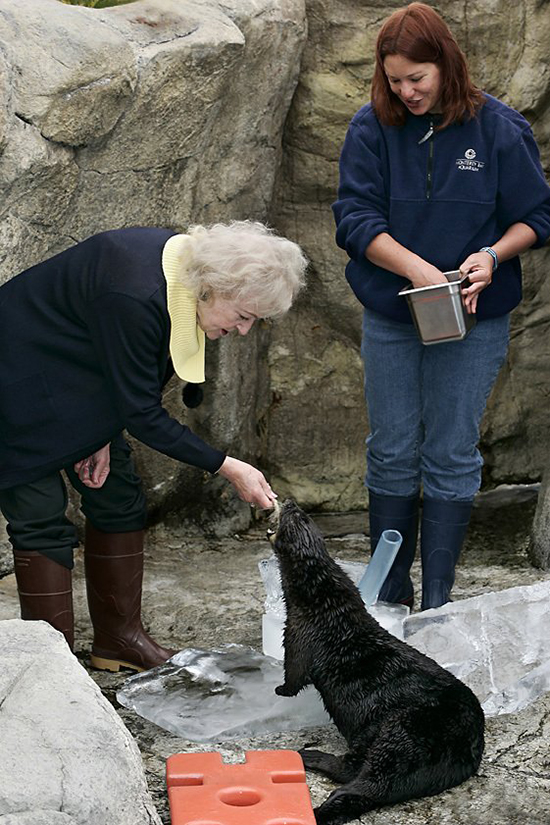 Sea Otter Gets a Visit and a Treat from National Treasure Betty White