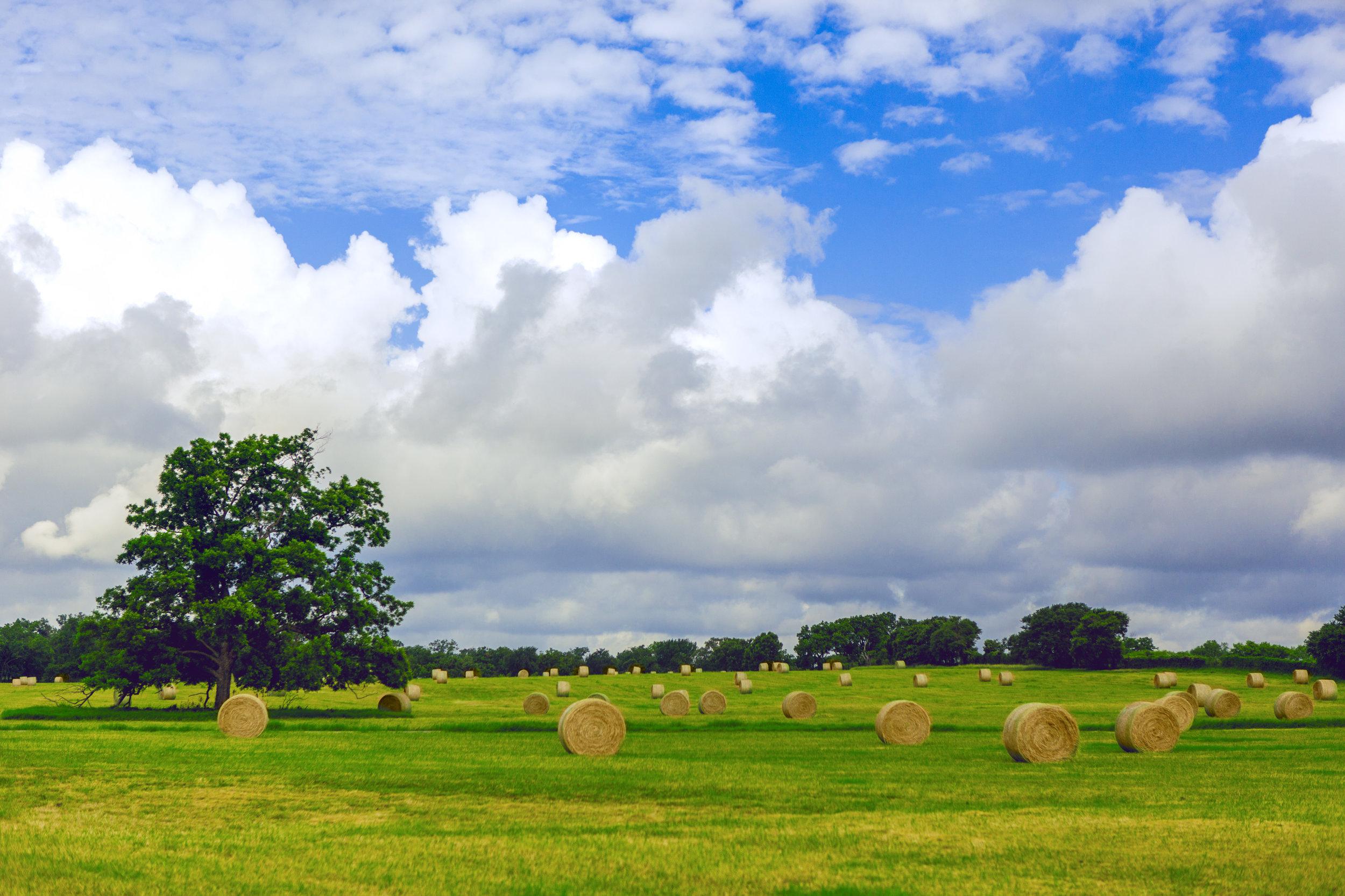 Ten xXx Ranch-21.jpg