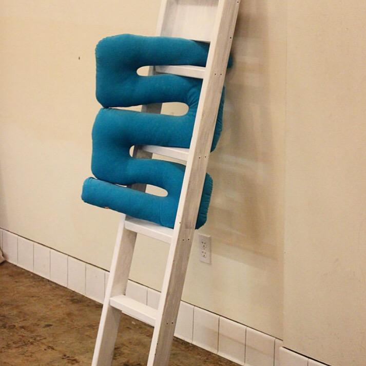 Pool Toy Blue Velvet Squiggle PIllow.jpg