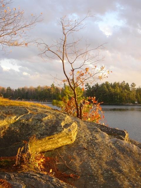 Fall scenery   enemy arrows by will o'hara