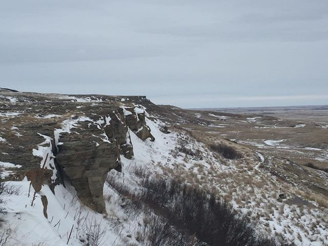 The cliff face at Head-Smashed-In Buffalo Jump in the foothills of the Rockies - used by the Blackfoot for 5,000 years. #headsmashedin #alberta #unesco #worldheritagesite #buffalo #hunting #indigenous