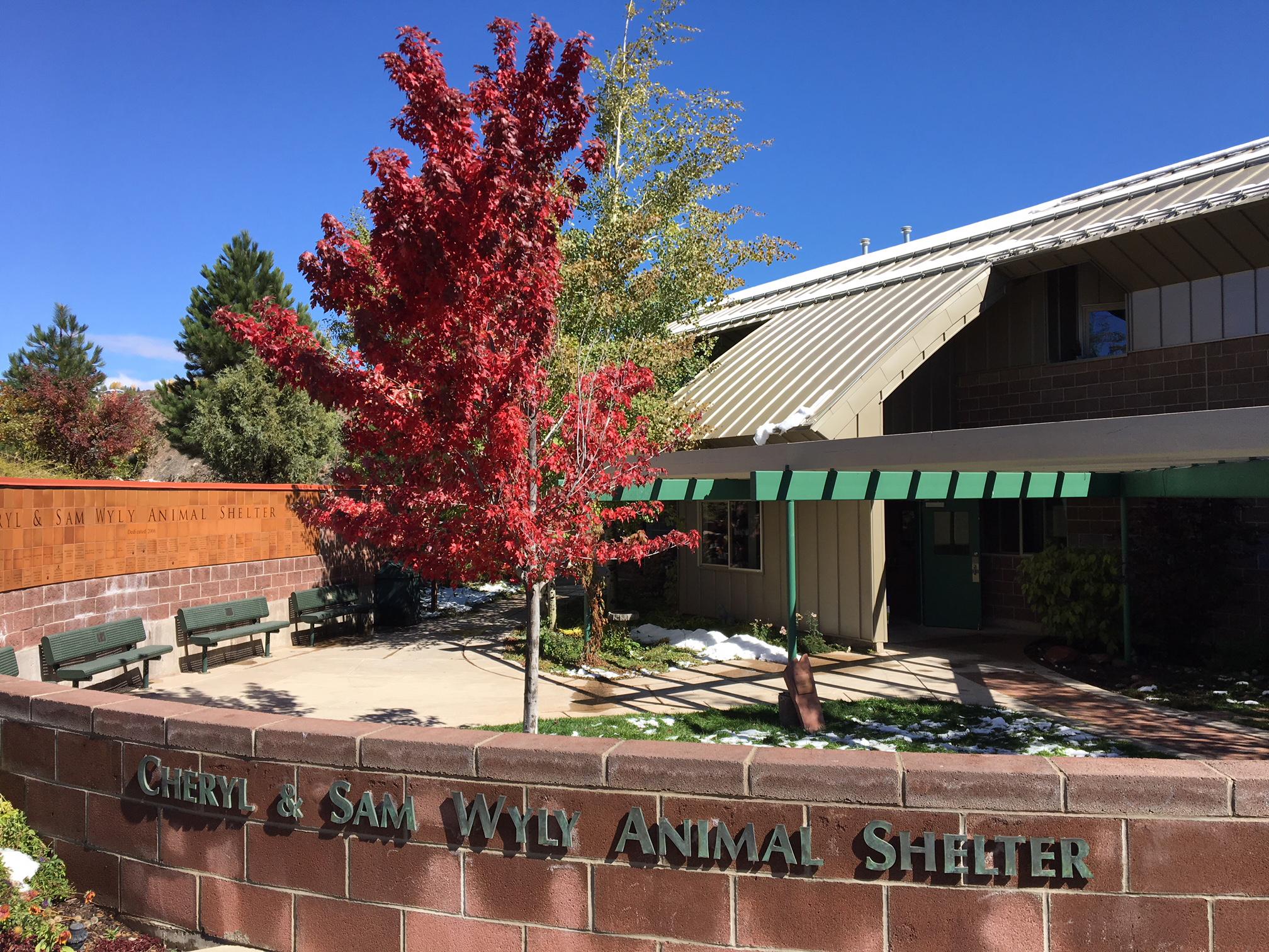 Shelter for Calendar.jpg