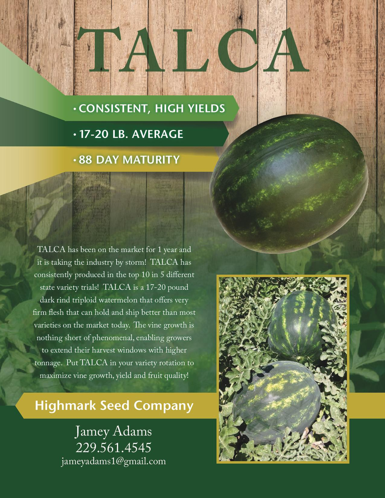 16152_Highmark Talca Flyer-page-001.jpg