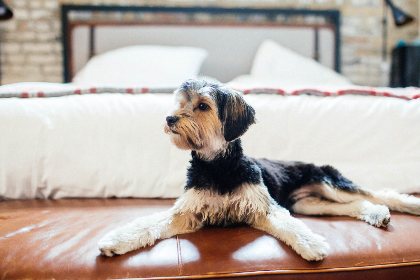 Wedding photography at the hewing hotel in Minneapolis
