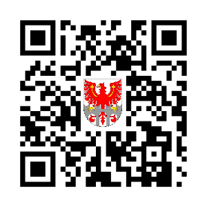 中华国乐团.png