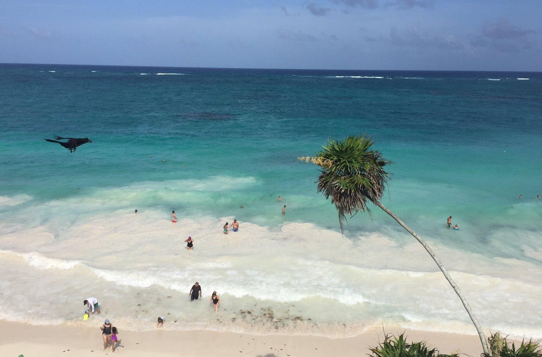 Playa Telum - Lulu Matute