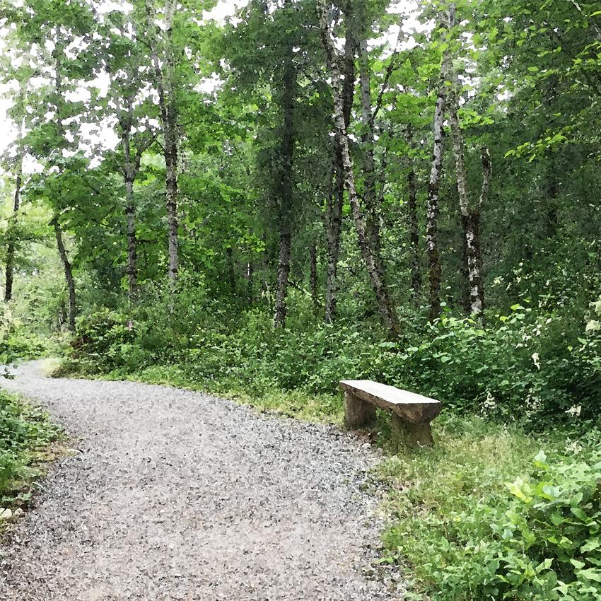 trail bench1