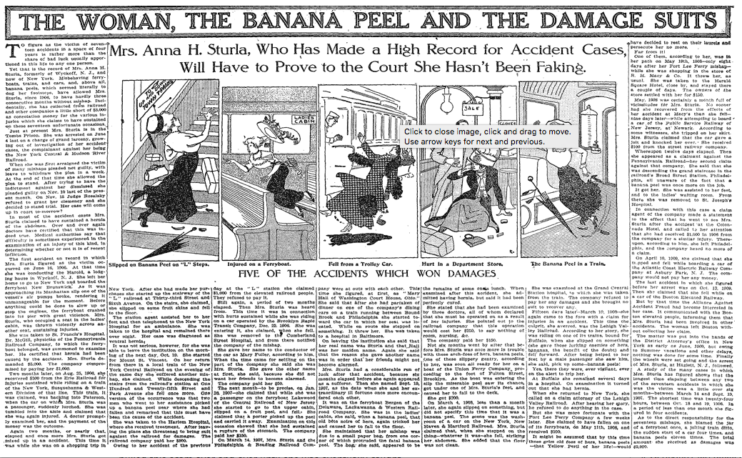 http://sundaymagazine.org/2010/11/the-woman-the-banana-peel-and-the-damage-suits/