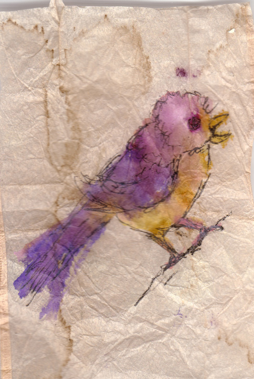 purple bird.jpg