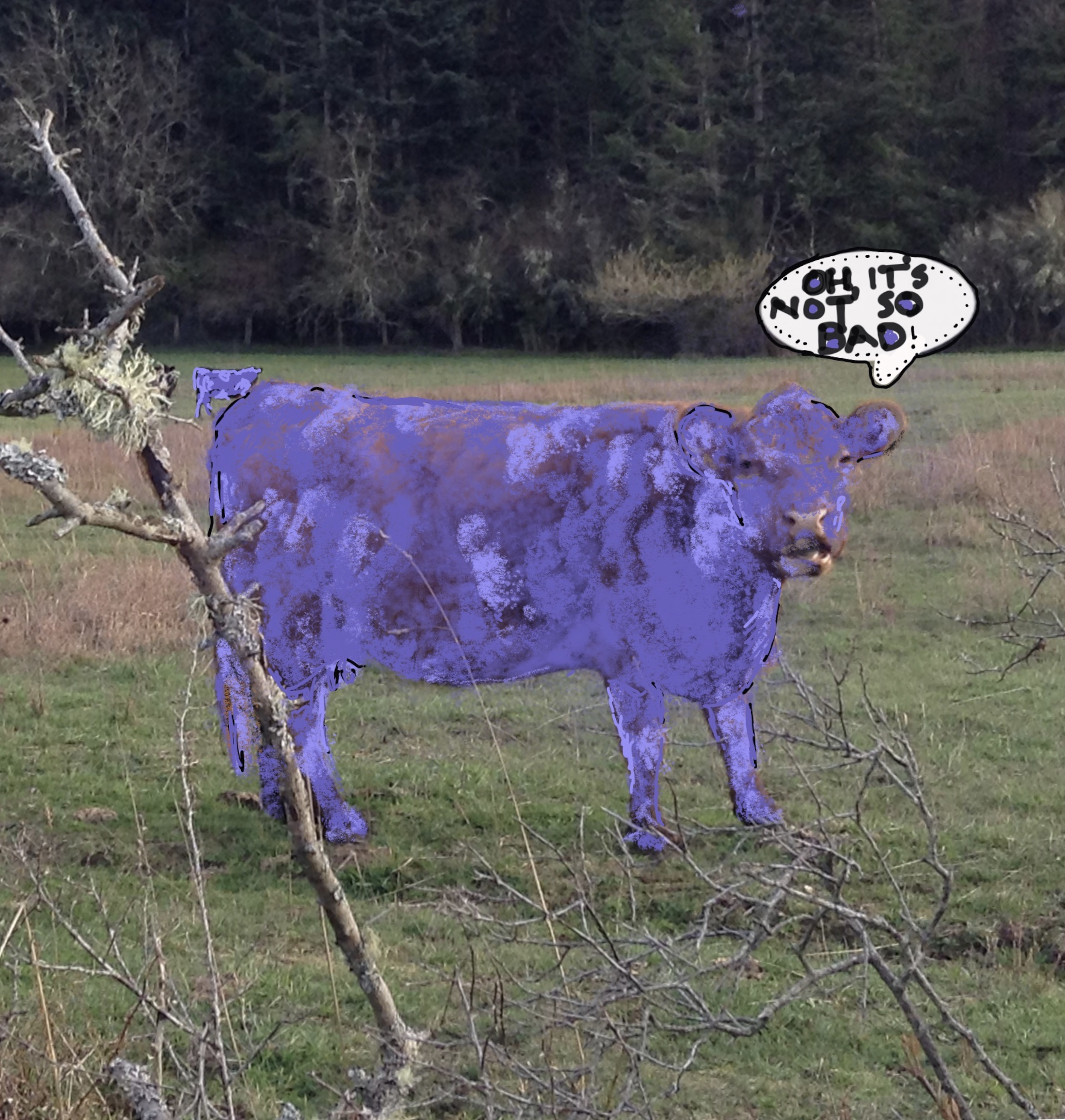 purple cow from photo.jpg