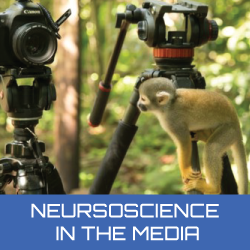 home-neuroscience-in-the-media.jpg