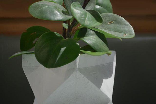 Polar white x-form . Objects for the sophisticated eye . #minimalist #minimalhomeware #archiproducts #interiordesign #showroom #skandihus #seekthesimplicity #studiophotography #concrete #concretelife #concretejungle #interiorstyle #minimaldesign