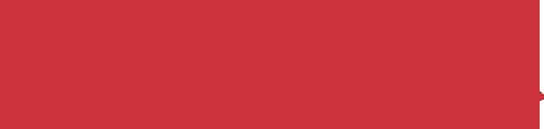 salsa-logo.png