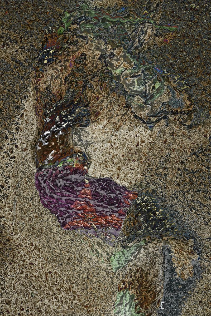 Mermaid in Amber.jpg