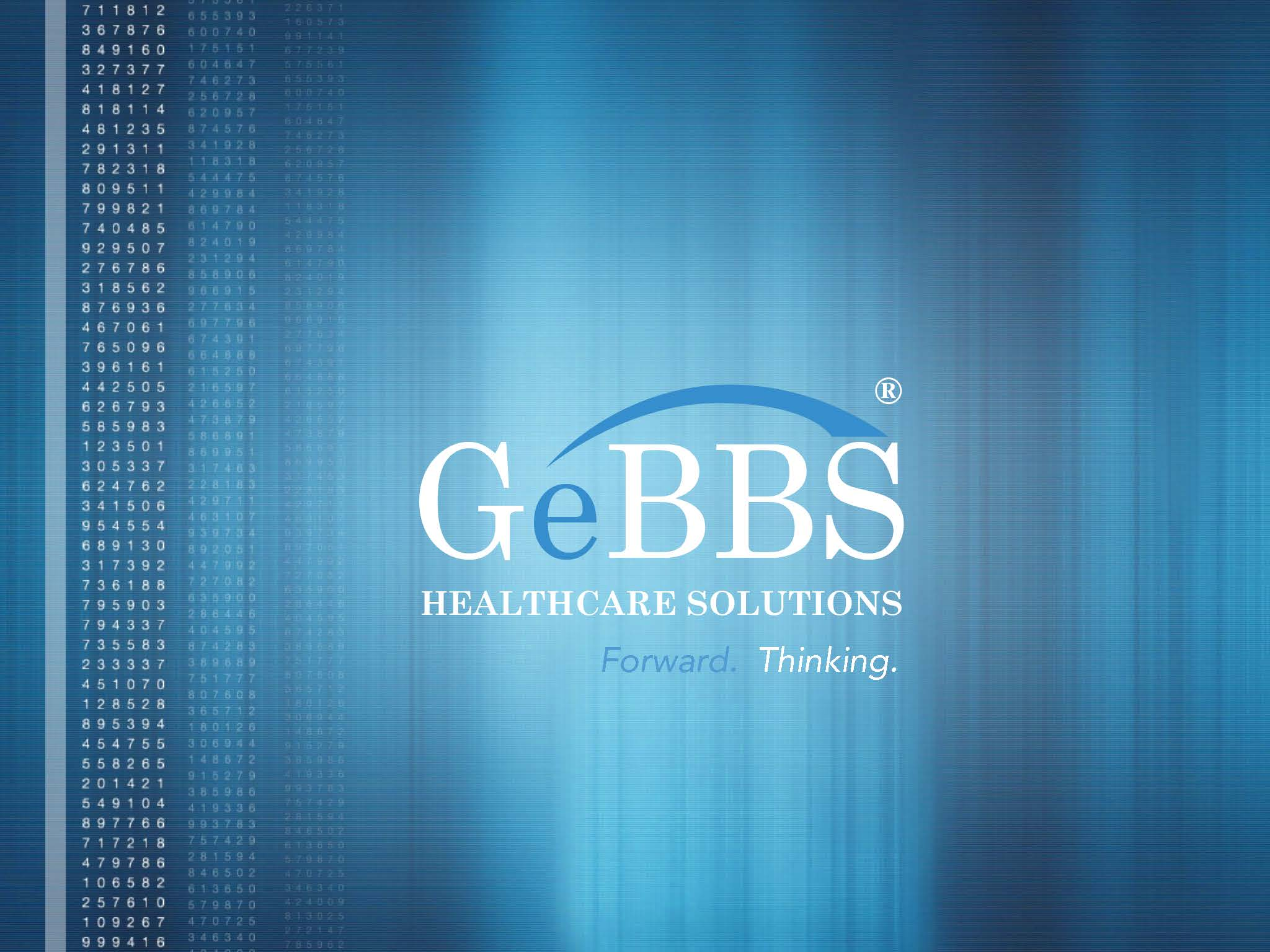 GeBBS Corporate Deck v8_Page_17.jpg