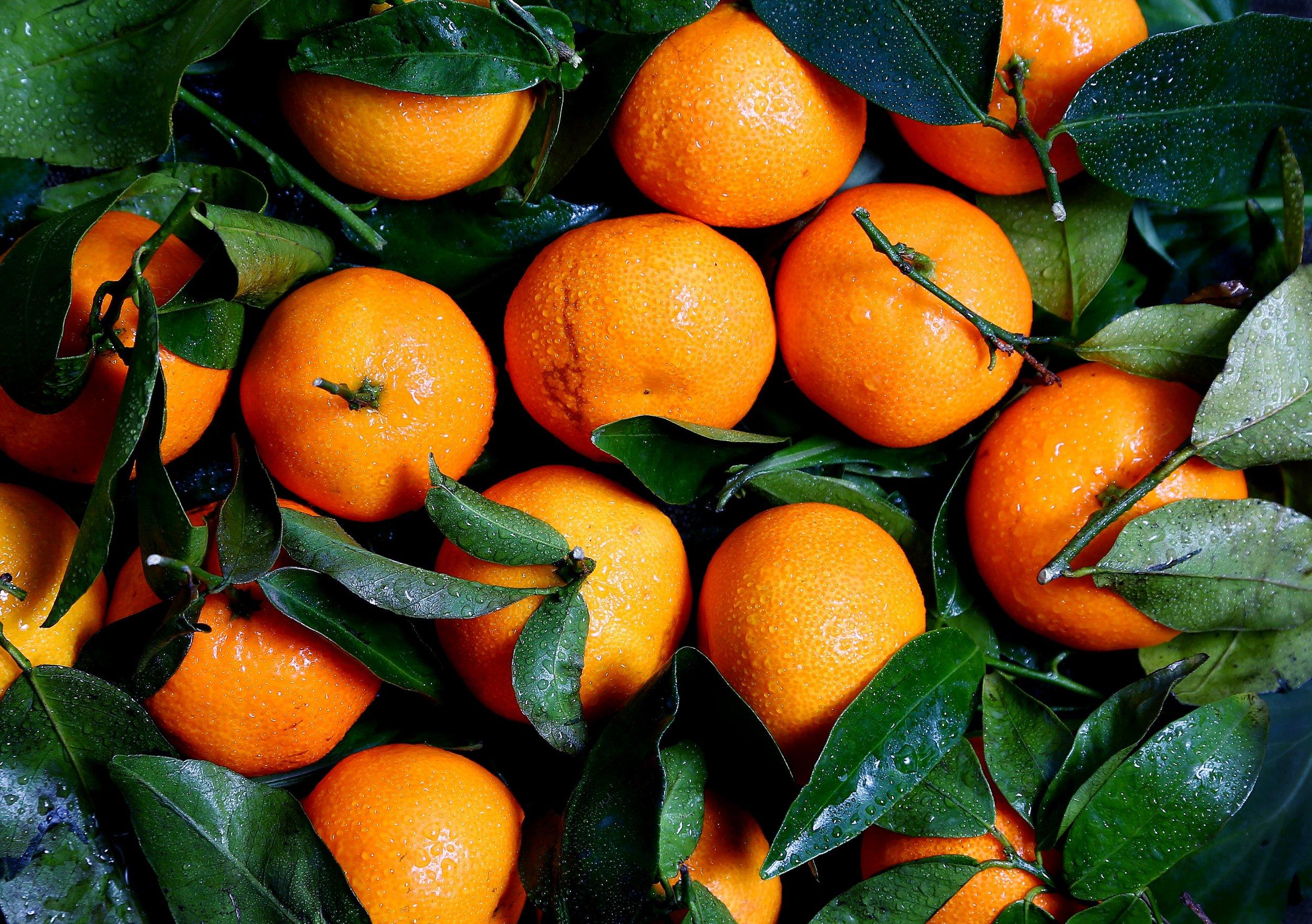 Heart-disease-oranges.jpg