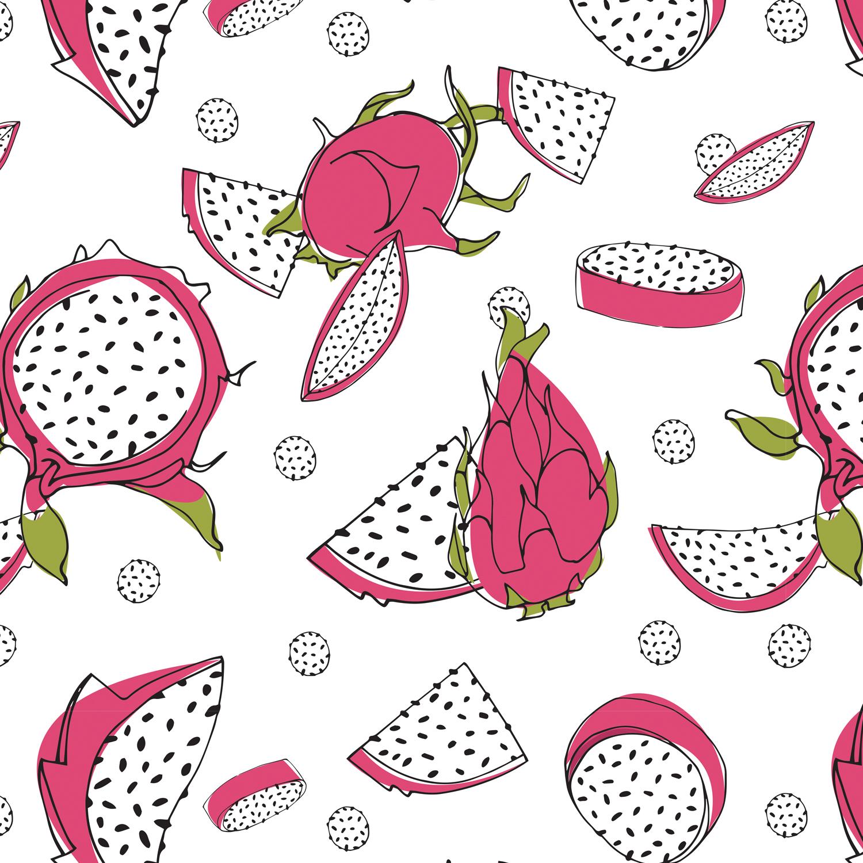 Dragon Fruit II   Handsketch and Illustrator